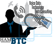 Hamilton Business Technology Consulting